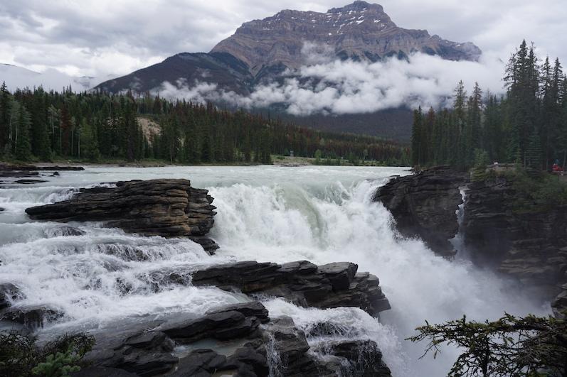 Athabasca Falls | wat.erleben