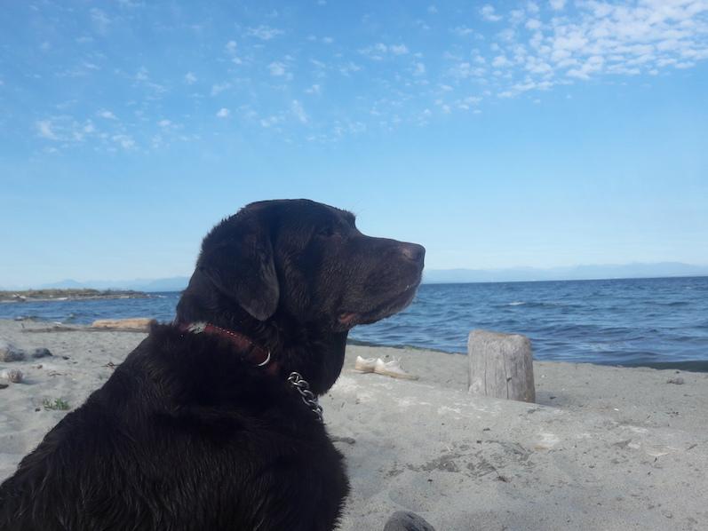 Annie am Airforce Beach | wat-erleben