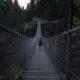 Elk Falls Suspension Bridge   wat-erleben