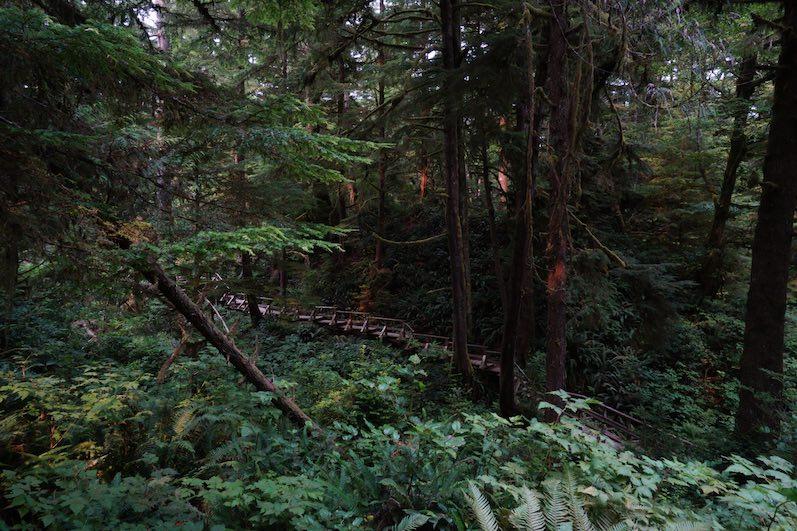 Schooner's Cove Trail   wat-erleben