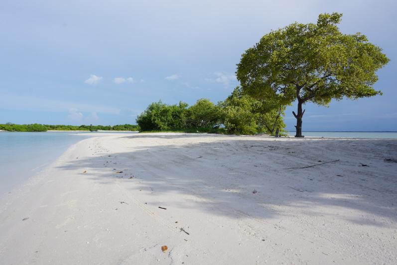 Der Osten von Holbox am Punta Coco, Isla Holbox | wat-erleben