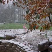 Es beginnt zu schneien, November in New York | wat-erleben