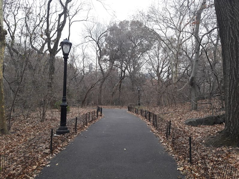 Der Winter ist angekommen im Central Park, NYC | wat-erleben