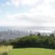 Honolulu von oben - beim Fahren des Tantalus Drives, O´ahu   wat-erleben