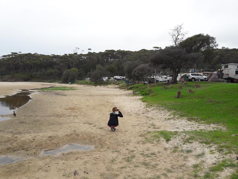 Ich in Action bzw. beim Fotografieren der Kängurus am Merry Beach | wat-erleben