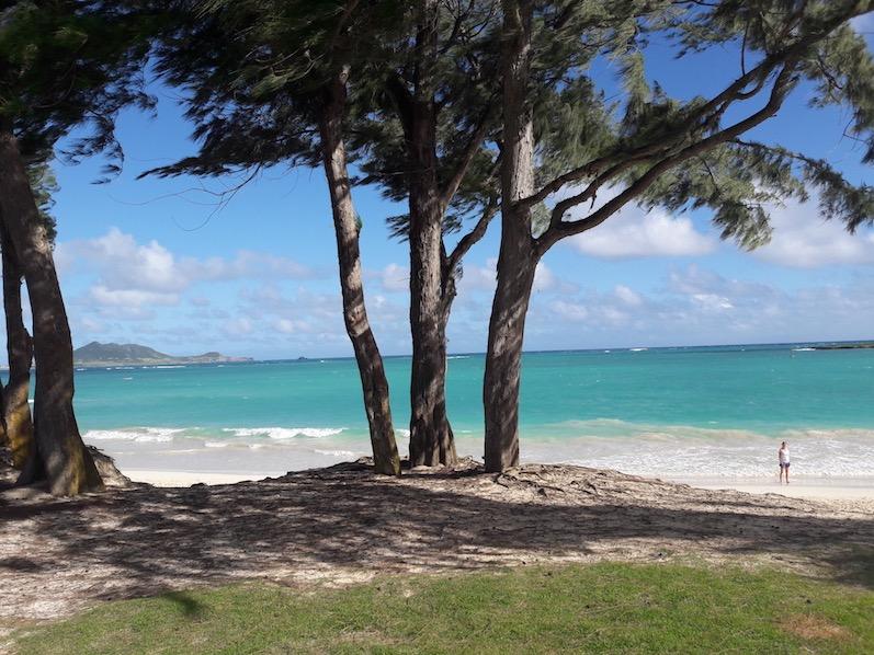 Laniae Beach, die Farbe des Wassers, unbeschreiblich; O´ahu | wat-erleben