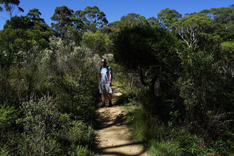 Wanderung zu den Blue Mountains, Sydney | wat-erleben