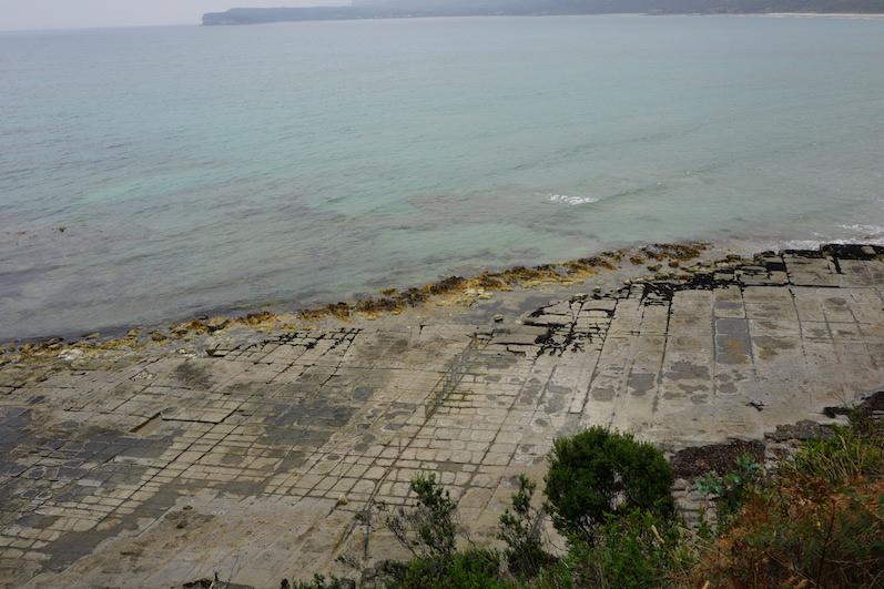 Tessellated Pavement, was die Natur alles drauf hat, Tasmanien | wat-erleben