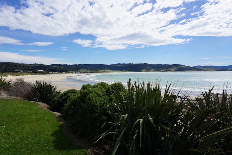 Curio Bay, Neuseeland | wat-erleben