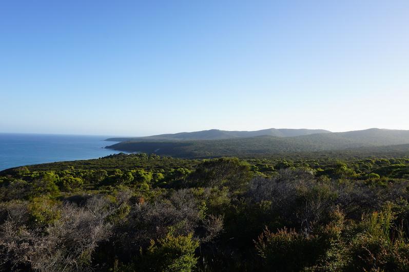 Der Narawntapu National Park von oben, Tasmanien | wat-erleben