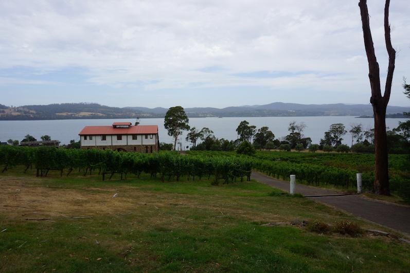 Der Weinberg von Marion lädt zum Tasting ein, Tamar Valley, Tasmanien | wat-erleben