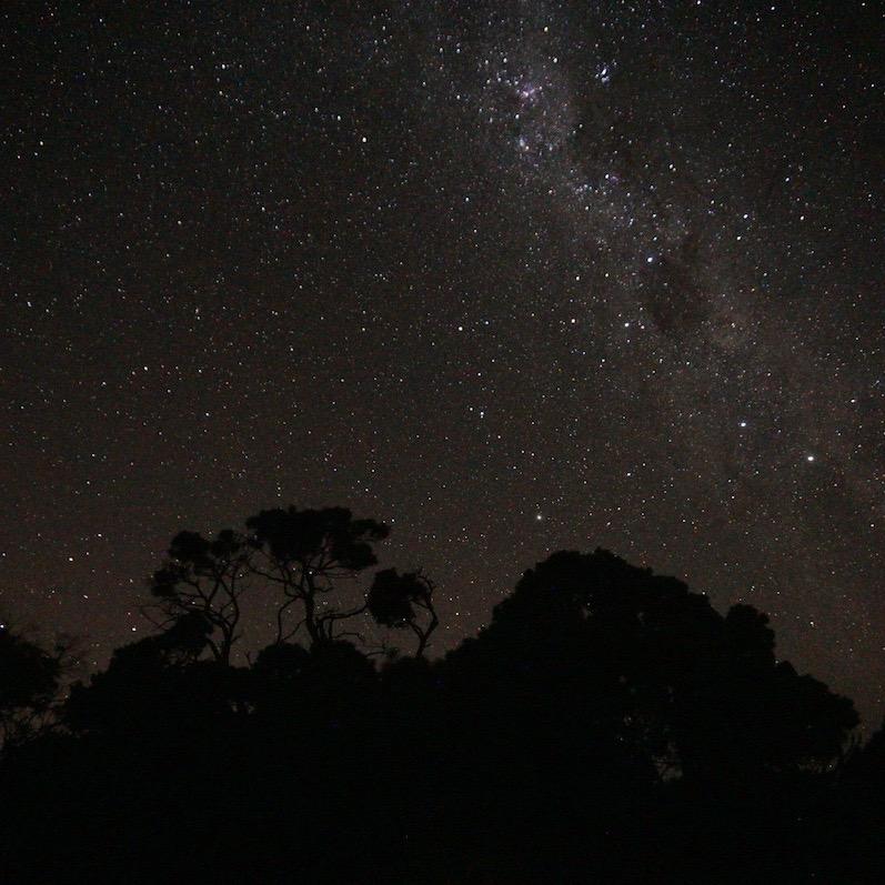 Die Milchstraße kann man nicht übersehen, den kleinen Wagen fanden wir auch, Narawntapu, Tasmanien | wat-erleben