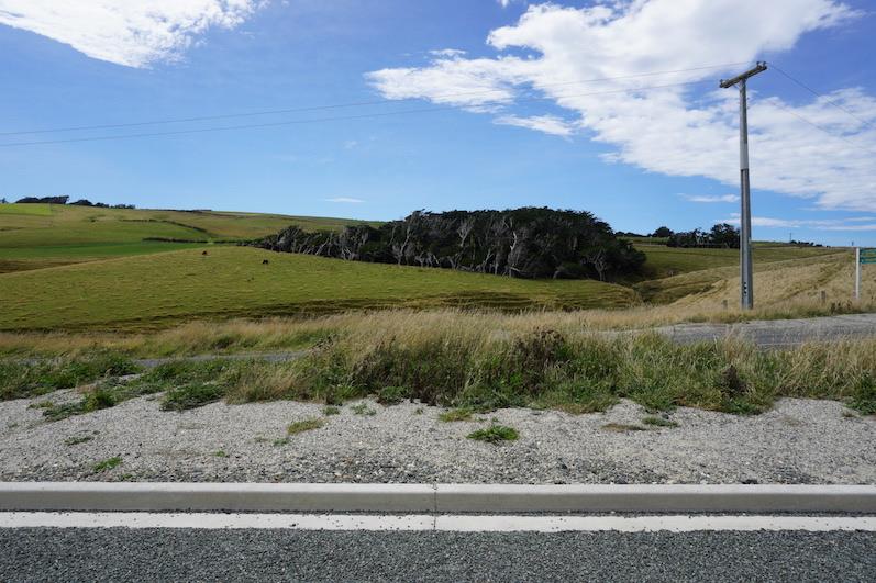 Leichter Schiefstand am Slow Point, Neuseeland | wat-erleben