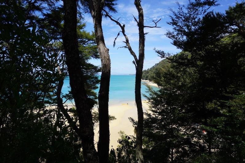 Sieht aus wie Südsee – hat die Temperatur der Nordsee, Abel Tasman, Neuseeland |wat-erleben