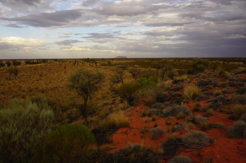 Überall nur roter Sand, Uluru |wat-erleben