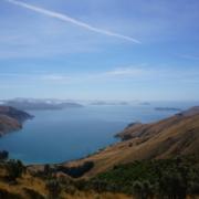 Von oben einmalig, wir mussten noch komplett runter fahren – auch einmalig, Titirangi Bay, Neuseeland |wat-erleben