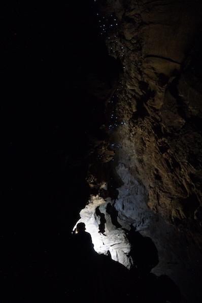 Alleine in der Höhle und umsonst, so lässt es sich am besten mit Glühwürmern genießen, Neuseeland | wat-erleben