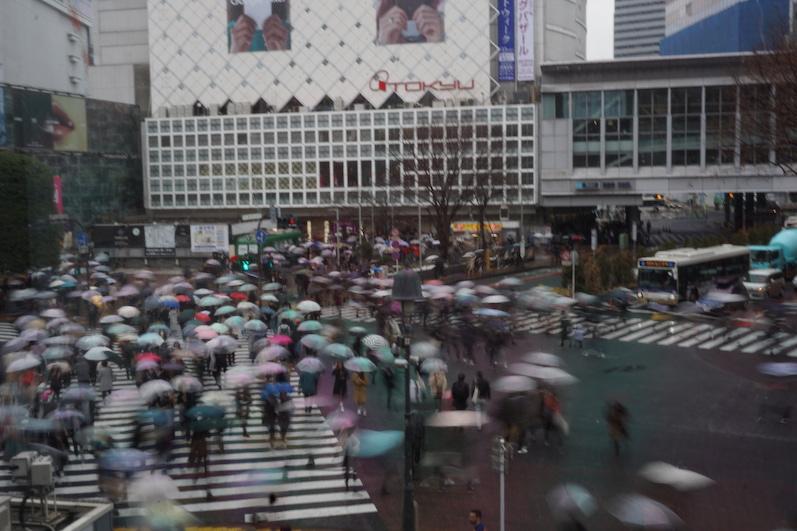 Das ist nicht die Rush-Hour, Shibuya Kreuzung, Japan |wat-erleben
