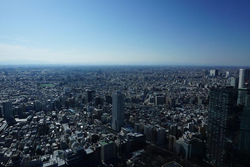 Egal wo wir hinschauten, soweit das Auge reicht nur Häuser und weniger Wolkenkratzer als gedacht, Metropolitan Government Building, Japan | wat-erleben