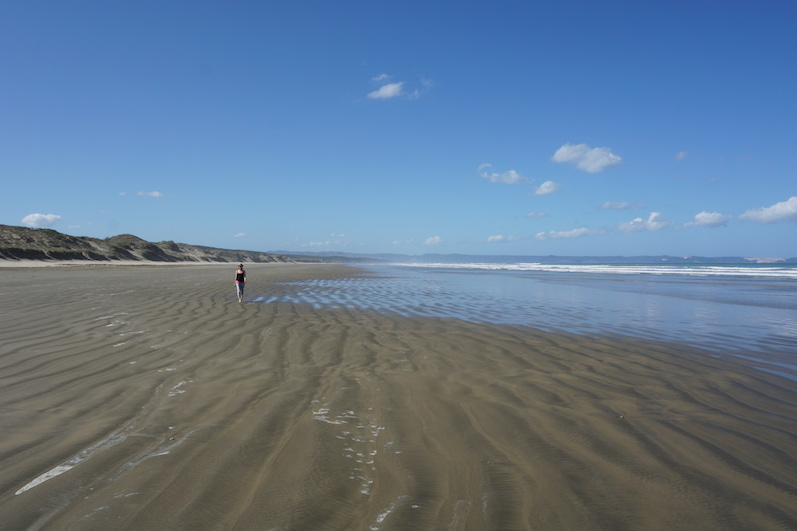 Gestern hielten wir vor der Rückfahrt am Ninety Mile Beach an, dunkler Sand soweit das Auge reicht, Neuseeland | wat-erleben