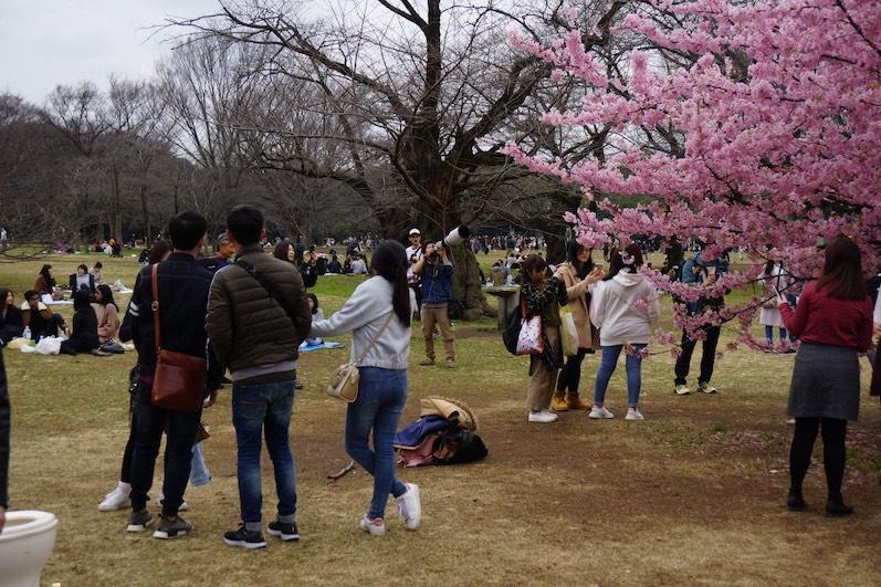 Man kann es auch übertreiben, siehe Objektiv, Tokio, Japan | wat-erleben